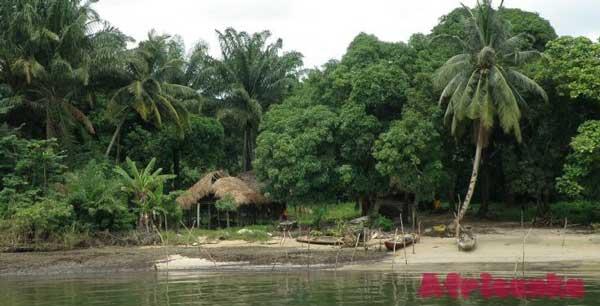 Климат Нигерии