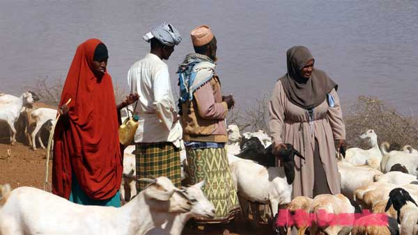 Люди в Сомали