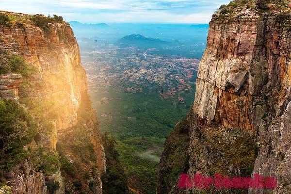 Ангола: Растительная жизнь