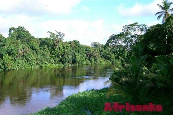 Камерун: дренаж