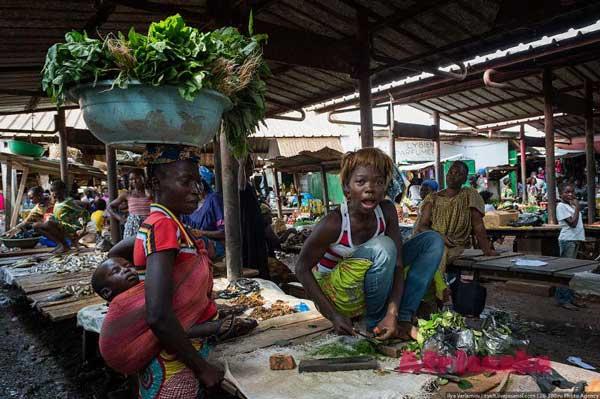 Центральноафриканская Республика: экономика