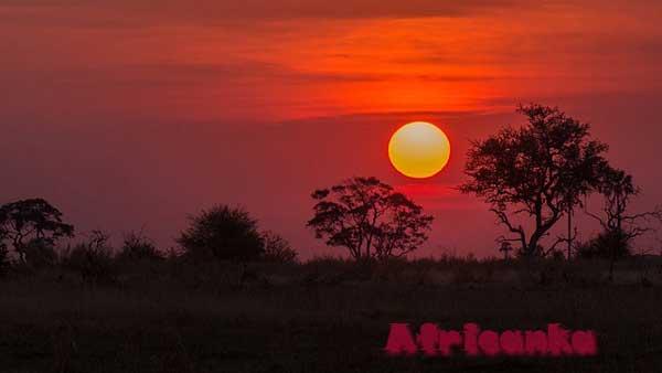 Коротко о Ботсване