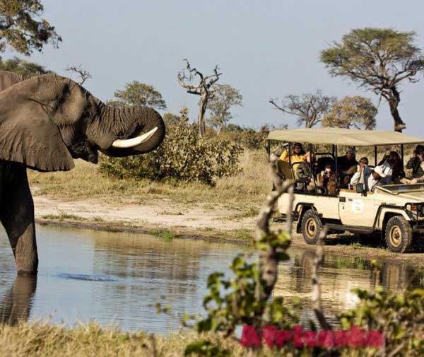 Ботсвана: туризм