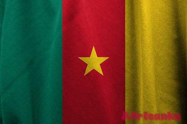 Камерун флаг