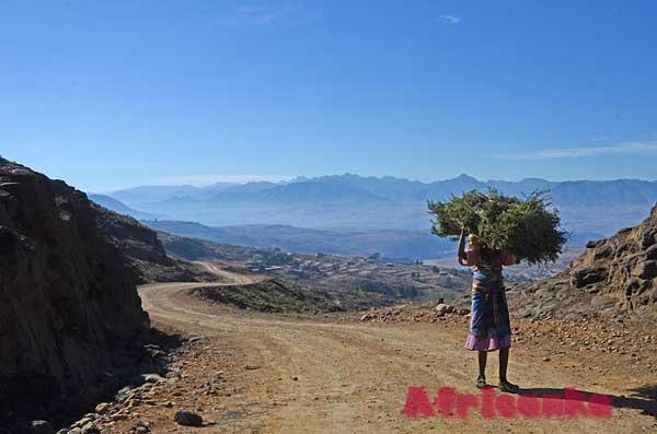 Лесото: экономика