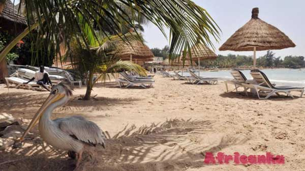 Туризм Сенегал