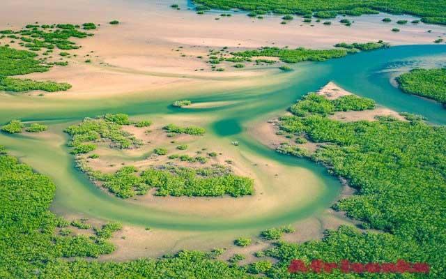 Сенегал: дренаж