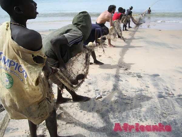 Сенегал: экономика