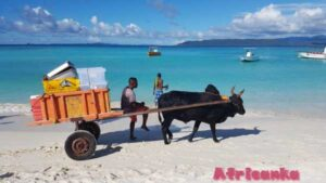 Советы для путешествия по Мадагаскару