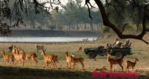 Национальный парк Нижняя Замбези