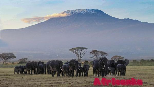 Танзания - 11 безопасных стран в Африке