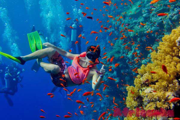 Подводное плавание на атолле Мнемба