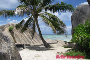 Интересные факты о Сейшельских островах