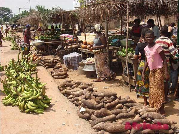Торговля Кот Дивуар