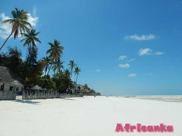 Отдых на Занзибаре: советы туристам