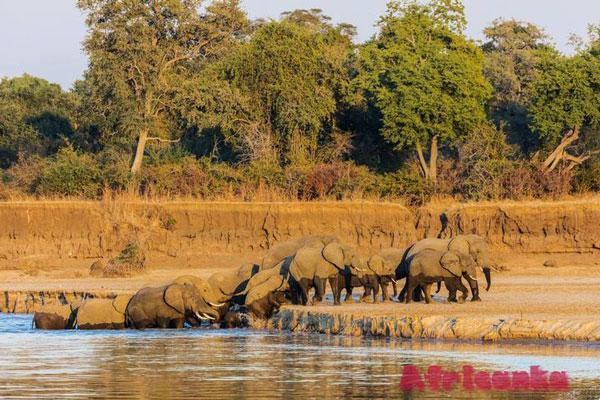Национальный парк Сиома Нгвези