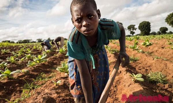 Детский труд в Африке