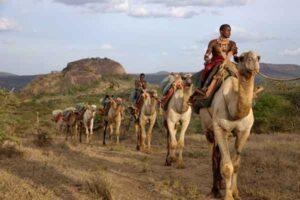 Советы по путешествию в Африку