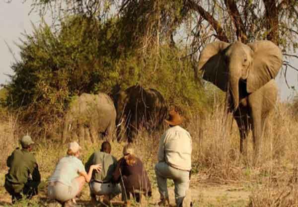 Подготовка к путешествию по Африке