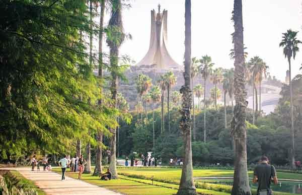 ботанический сад Алжира