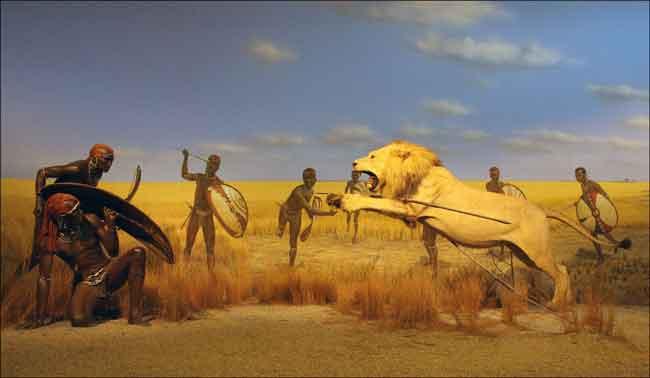 Племя Масаи охота на львов