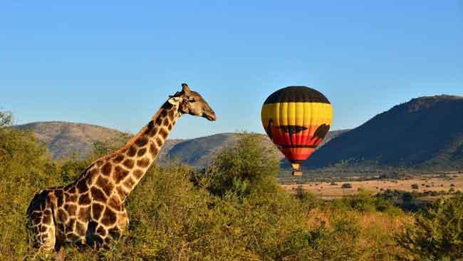 Национальный парк Пиланесберг, ЮАР